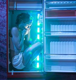 thumb-geladeira